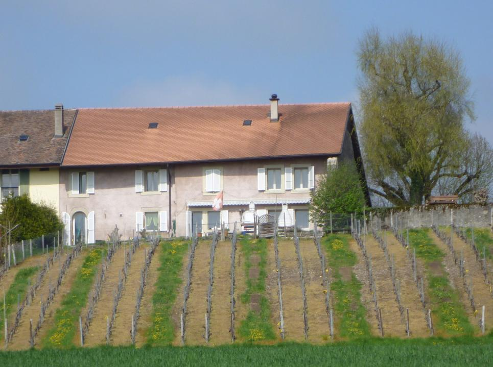 <p>Colombier VD - Magnique vue sur les Alpes et le Mont-Blanc, ferme avec appartement 150 m2.</p>